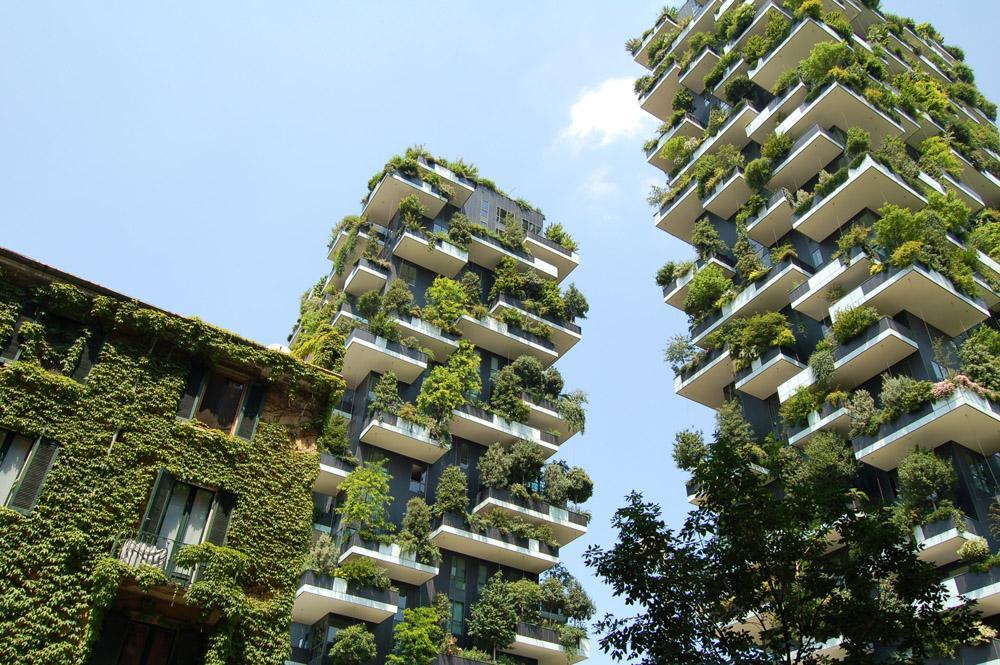 La innovación en sostenibilidad es una de las tendencias en alza en las empresas